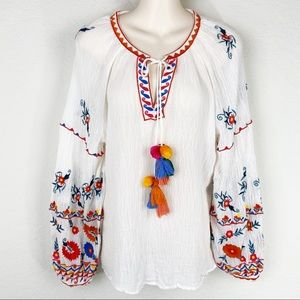 ZARA Trf Collection Embroidered Balloon Sleeve Top